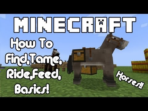 Minecraft Horses How To Find, Tame, Ride, Feed, Basics
