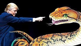Donald Trump The Vicious Snake - You knew damn well I was a snake before you took me in!
