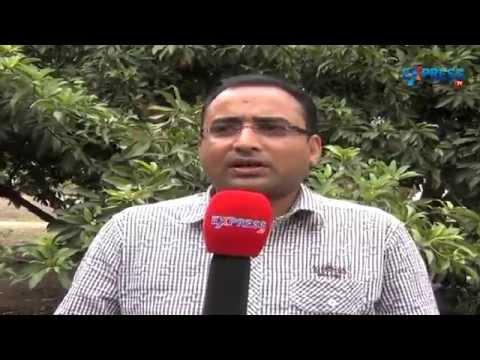 Sorghum cultivation and Trichoderma viride culture - Paadi Pantalu