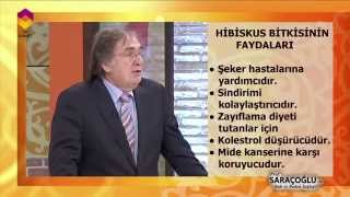 TIBBİ BİTKİLER- HİBUSKUS BİTKİSİ