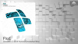 ENTRM041 FloE - Seaside (O.B.M Notion Emotional Mix) @ Vonyc Sessions 495 with Paul van Dyk