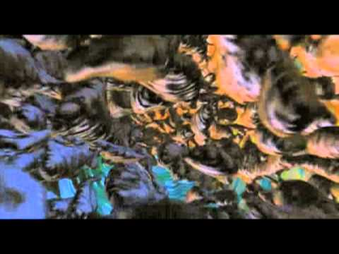 SBTRKT - Hide or Seek - music video