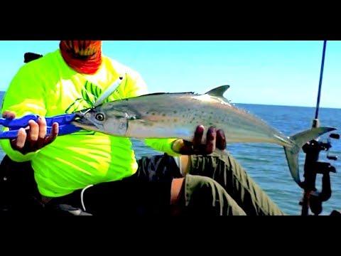 30milesOut.com~ JUST BEYOND THE BREAKERS #2 top water spanish mackerel