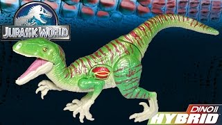 Opening: DINO HYBRID Velociraptor Growler Electronic Lights and Sound Charlie Dino Toy
