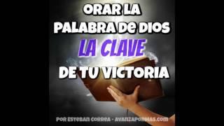 ORAR LA PALABRA DE DIOS La Clave de Tu Victoria REFLEXIONES CRISTIANAS 317