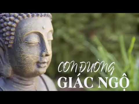 Lời Phật Dạy Thâm Thúy Về Cuộc Sống giúp Bạn TỈNH NGỘ Tiêu Tan Mệt Mỏi thumbnail