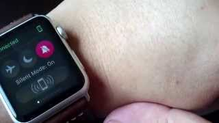 Understanding how to use Mute and Do Not Disturb on the Apple Watch with your iPhone