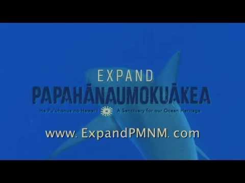 Protect Hawaiian Sharks