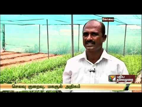 Sustainable Sugarcane Initiative - New Technology In Sugarcane Cultivation