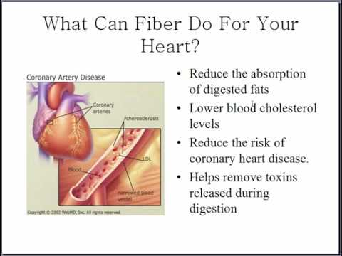 How important is fibre as part of your daily diet?