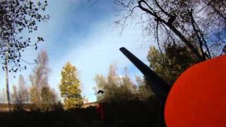 Woodcock Hunting October 2015 //Chasse à la bécasse en octobre au Québec