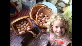 Ellie excited about eggs