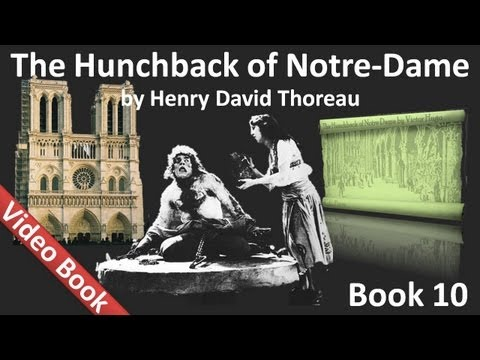 Book 10 - The Hunchback of Notre Dame Audiobook by Victor Hugo...