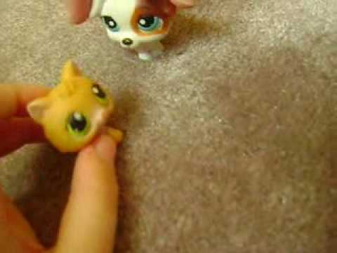 Littlest Pet Shop A Kindergarden Story :part 2 video