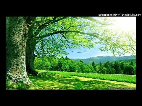 Vandiyele Maman Ponnu - S.P.Bala & Swarna mp3 tamil melody songs