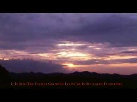 Cagayan de Oro City, Philippines Trailer
