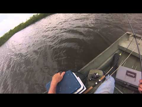 Best ever Bass fishing live bait crawlers GoPro video by WillCFish Tips and Tricks.