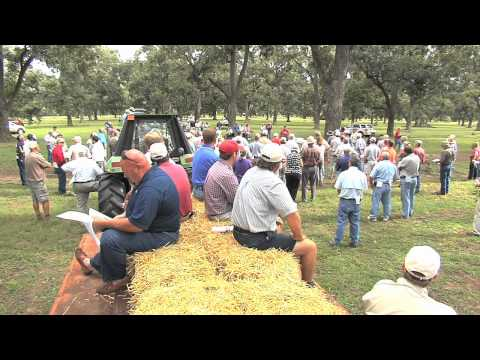 Georgia Pecan Fall Field Day Important To Growers