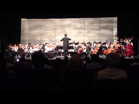 New jersey Youth Orchestra Dvorak Symp 8 1