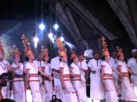 Toraja International Festival 2014 video
