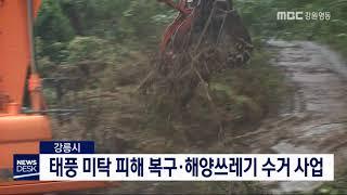 강릉시, 태풍 미탁 피해 복구·해양쓰레기 수거