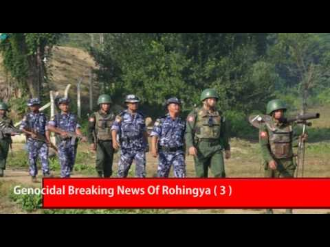 Genocidal Breaking News Of Rohingya ( 3 )