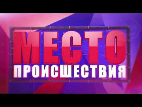 Алабаи напали и покусали женщину Кирово Чепецкий район