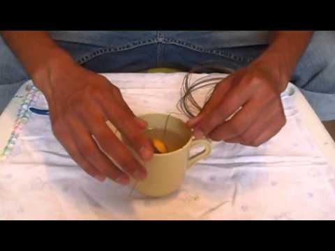Germina una semilla de aguacate desde casa youtube - Plantar aguacate en casa ...