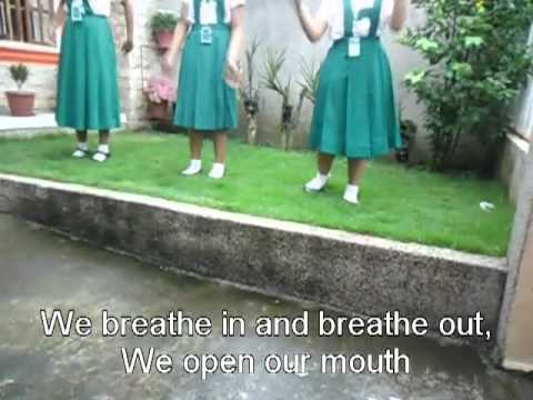 Respiratory System Jingle video