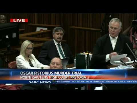 Oscar Pistorius Trial: Tuesday, 25 March 2014, Session 3