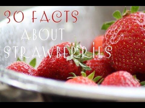 30 interesting facts about strawberries youtube for Interesting facts about strawberries