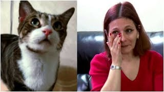Distressed cat refused to let owner sleep — When she follows him, she discovers a terrifying sight