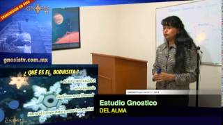 Estudio gnostico del Alma