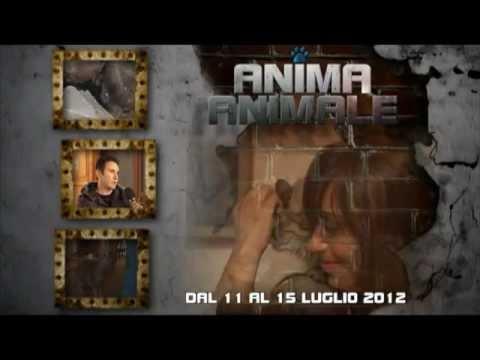 Promo per la 13ª puntata del format ANIMA ANIMALE – Tancri Produzioni Video