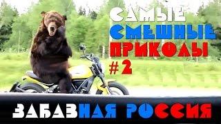 ПРИКОЛЫ ИЗ РОССИИ #2 Медведь на мотоцикле, сосиски в автобусе, переплыл через дорогу и др...