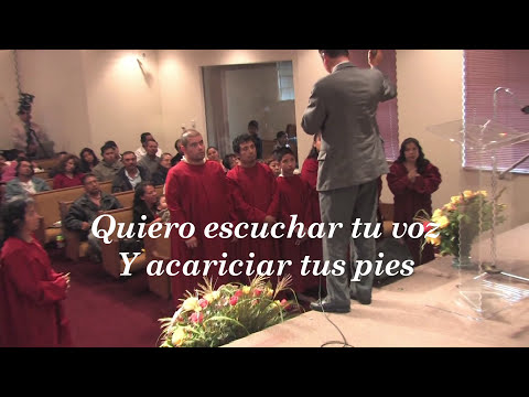 Felipe Garibo Quiero escuchar tu voz HD