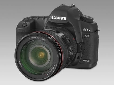 Canon 5D MKii VS Canon 7D