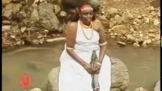 Oromo song by Hallo Dawwee