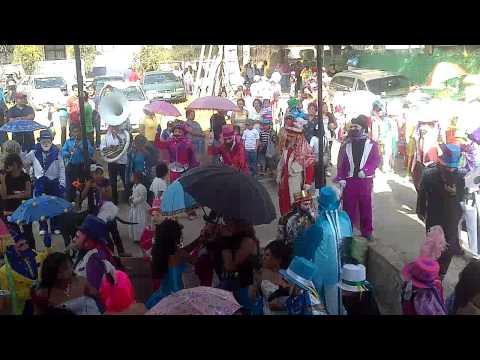 Carnaval Purificacion 2013