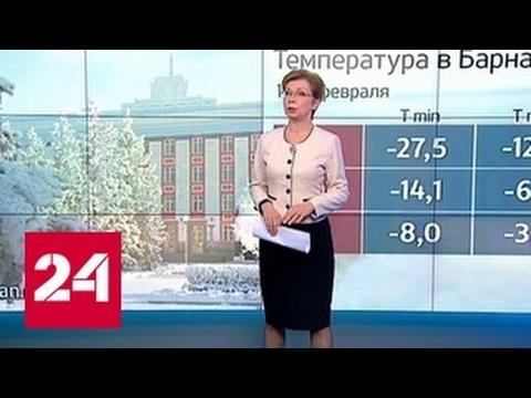 Погода 24: Алтай заметает снегом