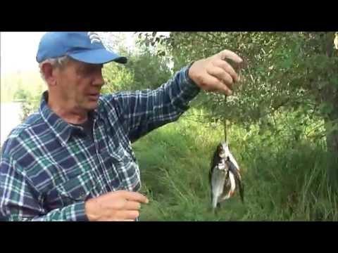 отчет о рыбалке на озере круглое в 2016 году