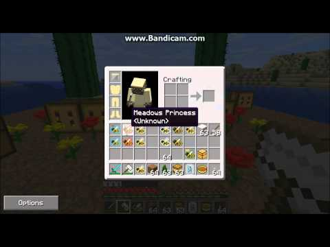 Minecraft Forestry Mod: Beekeeping Tutorial: Part 2, Getting Bees and Starting Apiaries