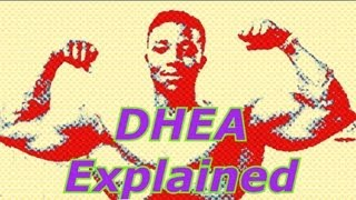DHEA Explained - Bodybuilding Tips To Get Big