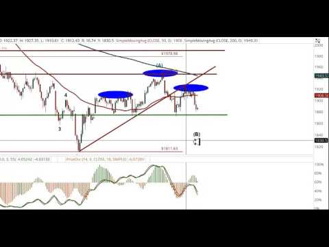 sentiment timing special free market update