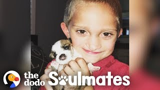 Boy And His Puppy Both Have The Same Cleft Palates | The Dodo Soulmates