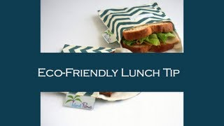 Eco Friendly School Lunch Bag Tip & Giveaway