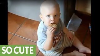 Baby furious at dog for stealing his cookie