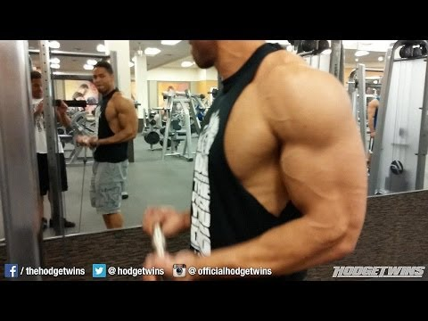 Back & Biceps Workout @hodgetwins