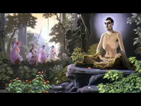 Diệu Âm - Niệm Phật Hộ Niệm Vãng Sanh Vấn Đáp - 9/24