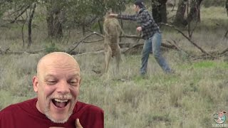 REACTION VIDEO Man Punches A Kangaroo In The Face To Rescue His Dog VideoMp4Mp3.Com